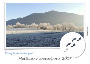 Belle Année 2017 !!